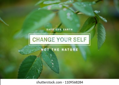 Saving the world quotes. Leaves with water drops photo image with environmental awareness quote. Save the earth.
