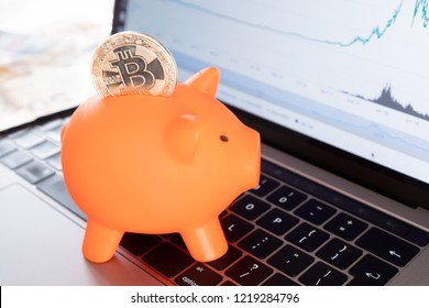 Savings in Bitcoin cryptocurrency