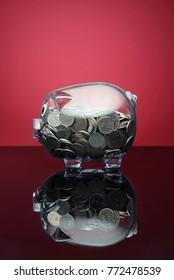savings concept piggy bank
