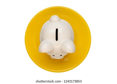 Savings consumer concept. Piggy bank on the yellow plate isolated on white background.