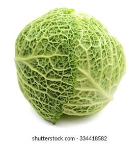 savoy cabbage head on white background