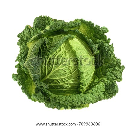Savoy cabbage isolated without shadow