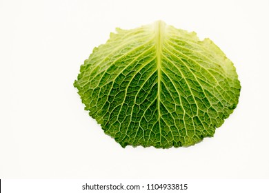 a savoy cabbage on a white surface