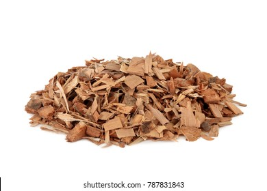 Saw palmetto herb herbal medicine can reduce urinary frequency whilst increasing urinary flow and helps benign prostatic hyperplasia and may delay the need for prostrate surgery. Sabal serrulata.