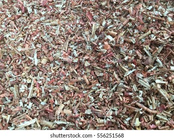 Sawdust of dry alder wood with pieces of dry brown bark on ground. Texture with details