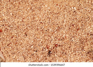 Sawdust or wood dust texture background. Wood sawdust background closeup. Sawdust floor texture. Top view. Saw dust texture, close-up background of brown sawdust.