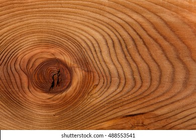 sawing of wood close up. Background and texture of wood Larch