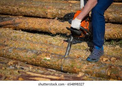Sawmill, chainsaw