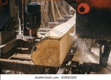 Sawmill. cutting wood. Ash