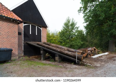 sawmill with a few trees outside