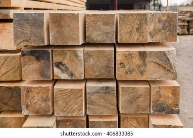 sawmill, wood processing, timber drying, harvesting, drying boards, baulk, dead trees, production, yellow wood is dried, wood processing plant