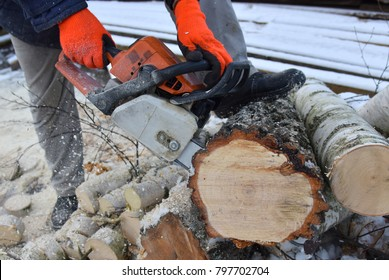 Sawmill worker with a chainsaw in his hands saws tree