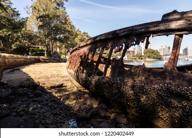 Sawmillers Reserve is one of North Sydney's true hidden gems. remains from Eaton's timber yard and the remains of a wrecked MSB hopper barge at the foreshore