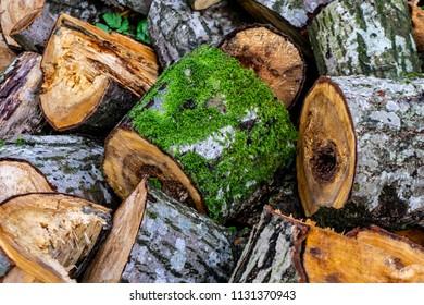 Sawn wood background