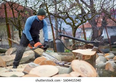 Sawyer bucking big beech logs with chainsaw