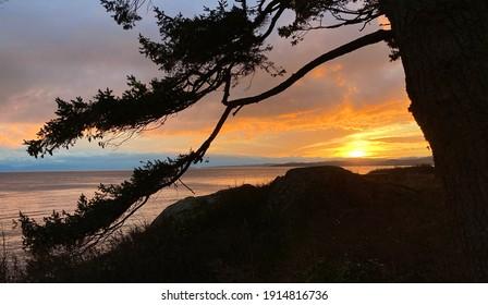 Saxe Point Park, Esquimalt BC,Canada,January 29 2021