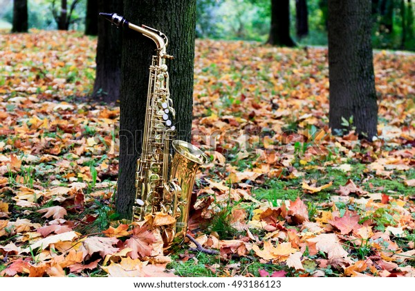 saxophone with autumn leaves