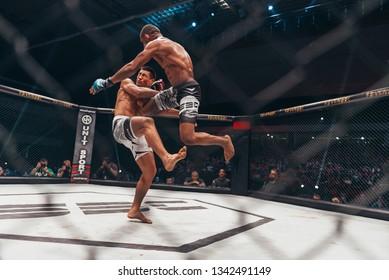 "SBC 12, Sportska Dvorana SPENS - December 1st, 2018: Luis Rafael ""Japa"" and Cleverson ""Carrilho"" Silva during the fight in octagon cage at SBC Revenge in Novi Sad, Serbia 2018"
