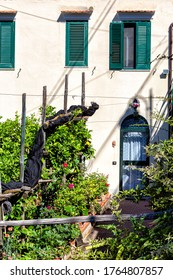 Scala (Salerno, Italien) - Die Trekkroute von Scala nach Ravello an der Amalfi Küste richtet sich sowohl an Experten als auch Anfänger: etwa 10 km Pfade zwischen den kleinen Bergdörfern und dem Meer