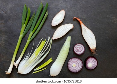 Scallions, French Echalion Shallots, large salad onions and red onions on slate background with copy space