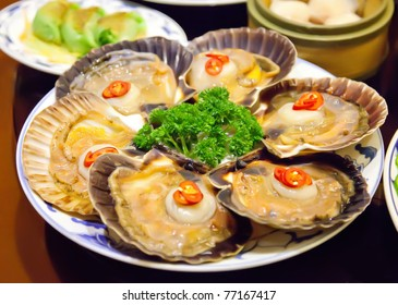 scallop sea fish