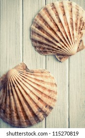 the scallops on old wooden floor