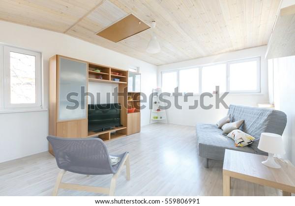 Terrific Scandinavian Interior Minimalistic Living Room Grey Stock Theyellowbook Wood Chair Design Ideas Theyellowbookinfo
