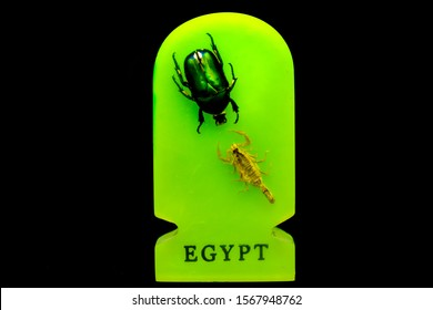 """A scarab and a scorpion facing each other on a gift from Egypt with the word """"Egypt"""" on the bottom."""