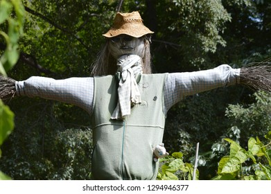Scarecrow of botanical garden