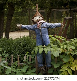 Scarecrow in the garden