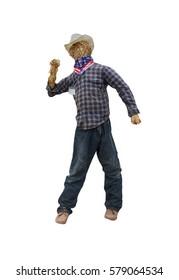scarecrow on isolate white back ground.