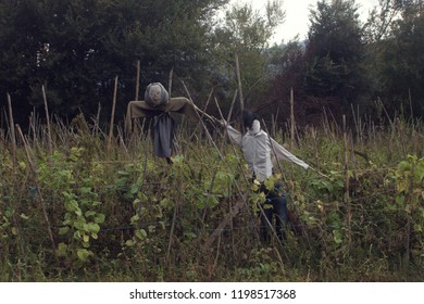 The scarecrow of on old lady - grandmother, holds the hand of a scarecrow of a young boy into a field of beans