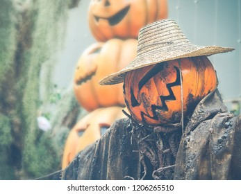 Scarecrow with a pumpkin head  wear grunge dirty clothes with yellow pumpkins in out of focus blurred background. Vintage style photos and filtered process . Selective focus.