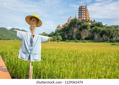 Scarecrow in rice field at Tiger Cave Temple,Kanchanaburi,thailand.