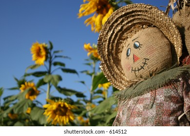 A scarecrow smiles in a Sunflower Forest.