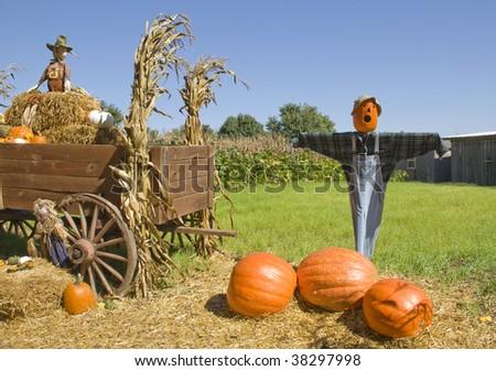 Scarecrows On Pumpkin Farm Wagon Hay Stock Photo Edit Now 38297998