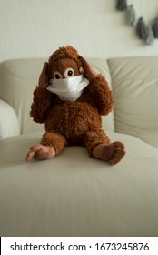 Scared holding head plush monkey in the mask