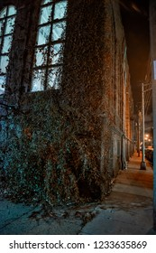 Scary and eerie urban city sidewalk street corner with large ivy covered vintage building windows at night