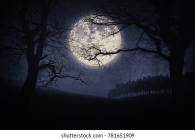 scary halloween landscape at night with trees and a full moon