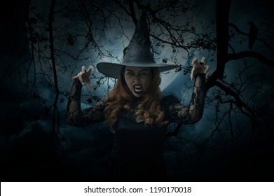 Scary halloween witch standing over dead tree, bird, full moon and spooky cloudy sky
