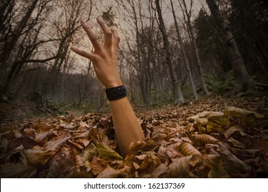 Scary hand emerging from the ground
