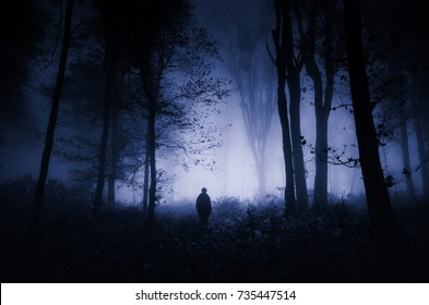 scary night scene in forest, halloween landscape