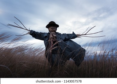 Scary scarecrow in a hat on a cornfield in cloudy weather. Halloween holiday background