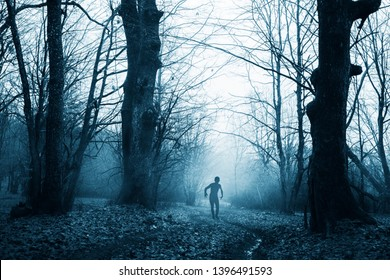 scary zombie in horror forest landscape