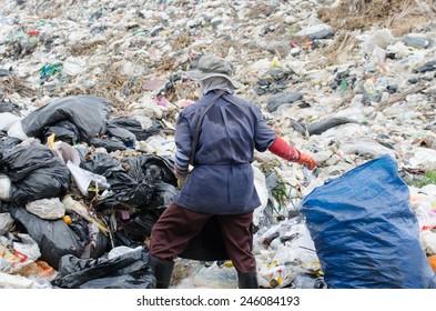 scavenger on big garbage heap