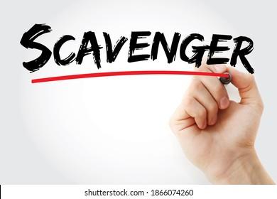 Scavenger-Text mit Marker, Concept-Hintergrund