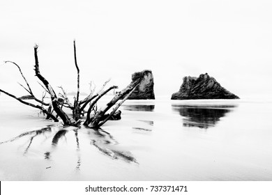 Scene at an Battle Rock Oregon beach in the Pacific Northwest on a cloudy day - in black and white