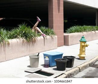 A scene of falling person into bush. Taken in Savannah, Georgia in May 2015.