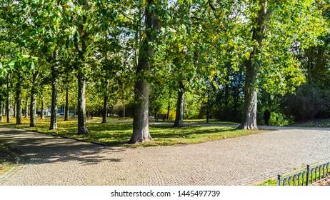 Scene in the hills of Letna garden in Prague - Shutterstock ID 1445497739
