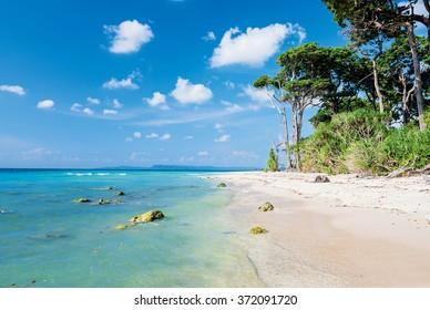 scene at laxmanpur beach, Neil Island, Andaman and Nicobar, India